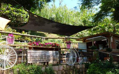 Bloomingdales Garden Centre